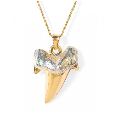 Collar Oro Colmillo Tiburón SHARK JAW