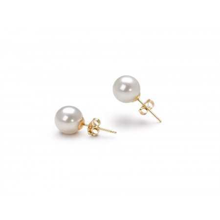Pendientes de Perlas PEARLS DAILY